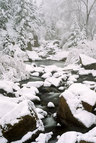 South Saint Vrain in Snow