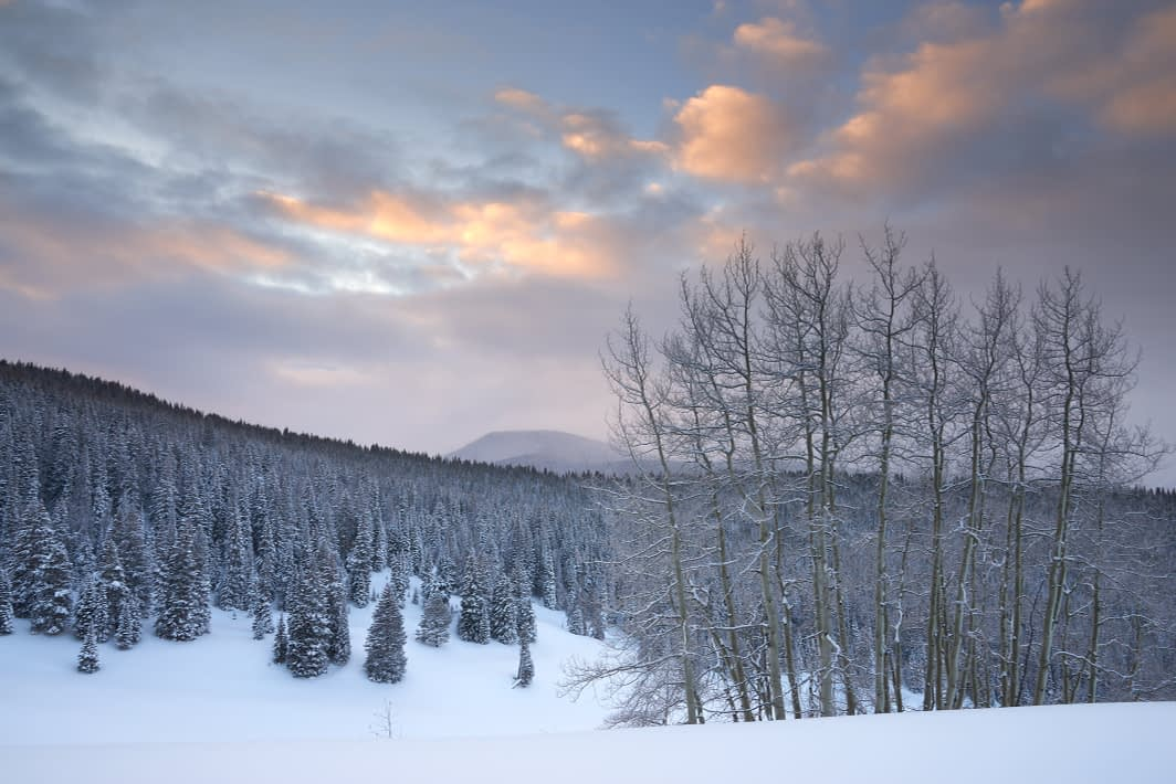 Winter Dawn along Spraddle Creek