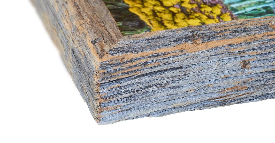 Sliver of Sequoia Frame Detail