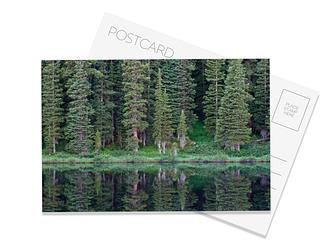Wheeler Lakes Postcard