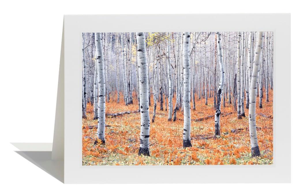 Last Hour of Autumn Card