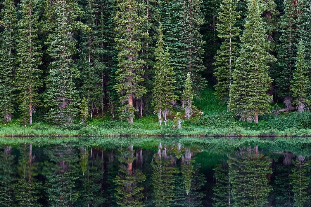 Wheeler Lakes