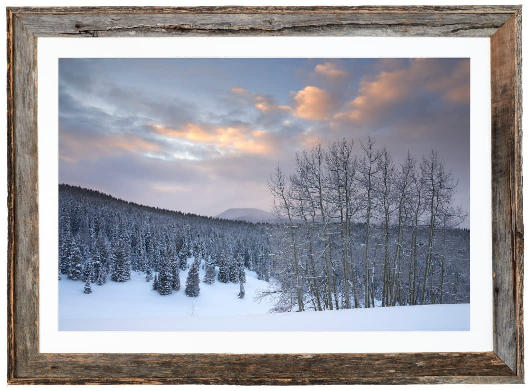 Winter Dawn along Spraddle Creek