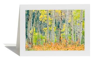 Autumn Collage Card
